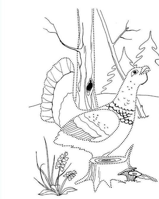 Детский рисунок лиса и тетерев (21)