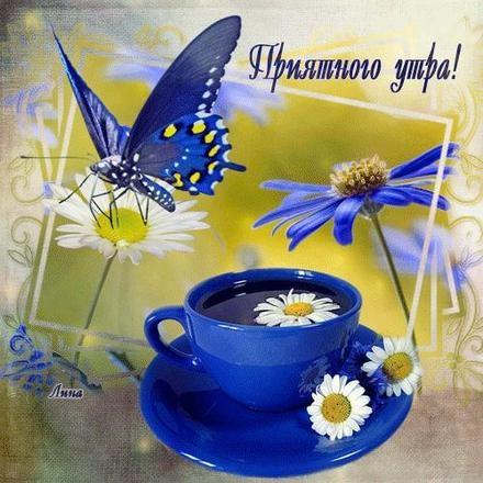 Доброе утро бабочка картинки в лучшем качестве (16)