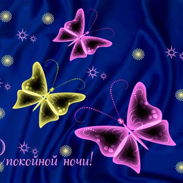Доброе утро бабочка картинки в лучшем качестве (2)