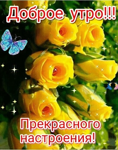 Доброе утро бабочка картинки в лучшем качестве (6)