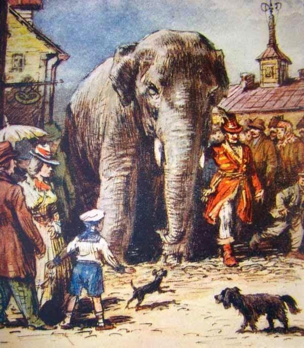Картинка моська и слон (18)