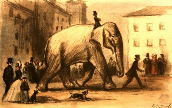 Картинка моська и слон (23)