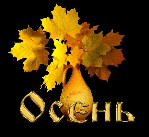 Картинки букет осенних листьев (10)