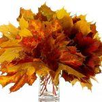 Картинки букет осенних листьев
