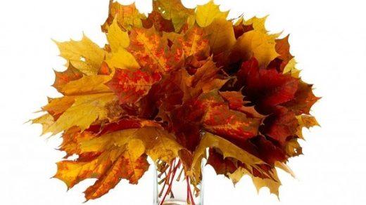 Картинки букет осенних листьев (18)