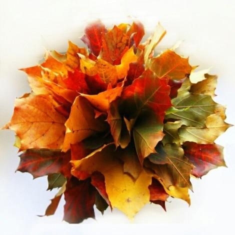 Картинки букет осенних листьев (19)