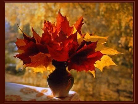 Картинки букет осенних листьев (25)