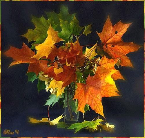 Картинки букет осенних листьев (4)