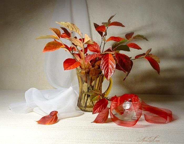 Картинки букет осенних листьев (6)