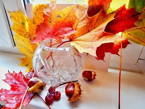 Картинки букет осенних листьев (8)