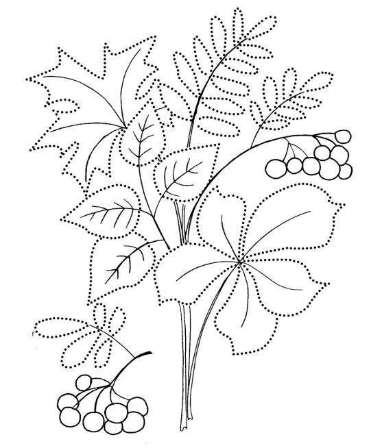 Картинки букет осенних листьев (9)
