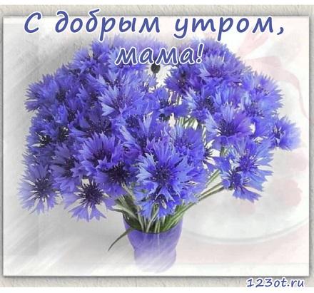 Картинки доброе утро и цветы (20)