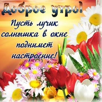 Картинки доброе утро и цветы (23)