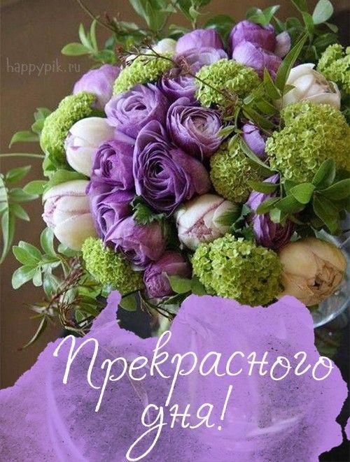 Картинки доброе утро и цветы (5)