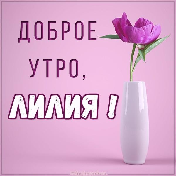 Картинки доброе утро лилии (1)