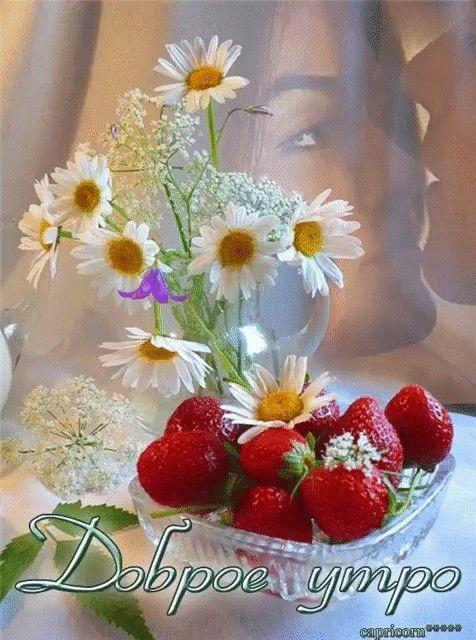 Картинки доброе утро лилии (12)