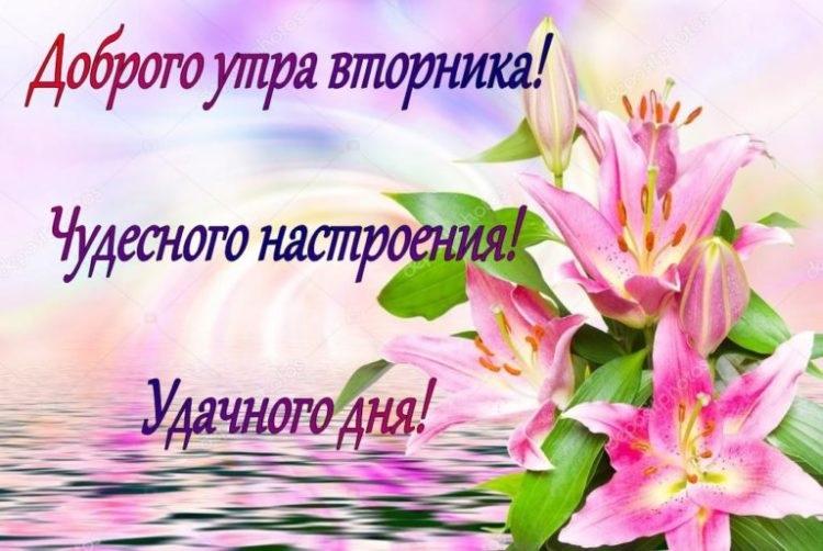 Картинки доброе утро лилии (14)