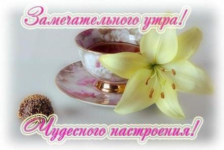 Картинки доброе утро лилии (8)