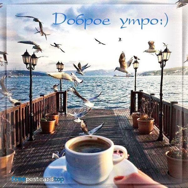 Картинки доброе утро море (45)