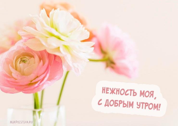 Картинки доброе утро очаровашка (14)
