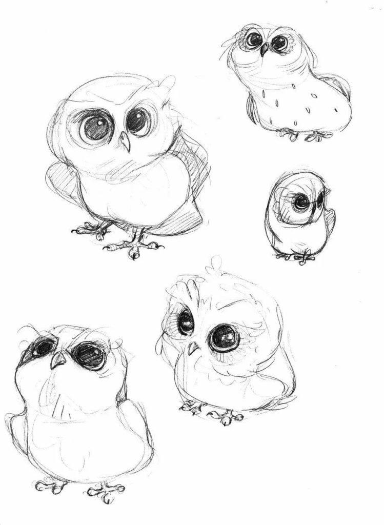 Картинки сова для срисовки (16)