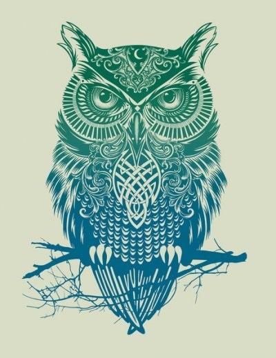 Картинки сова для срисовки (17)