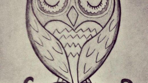 Картинки сова для срисовки (20)