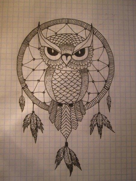 Картинки сова для срисовки (21)