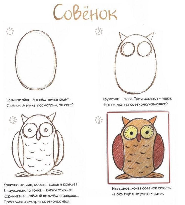 Картинки сова для срисовки (8)