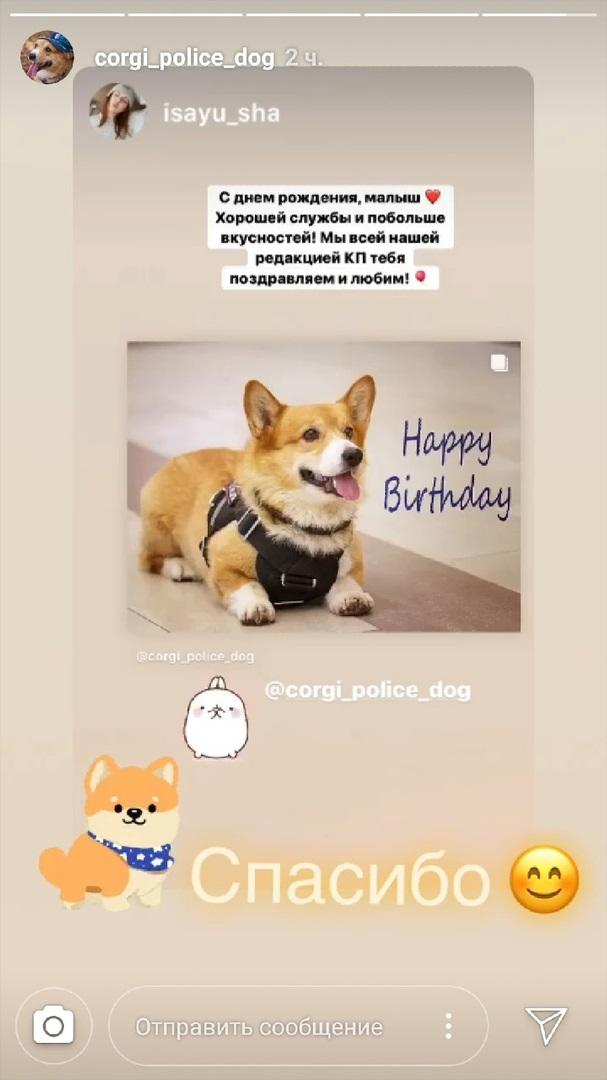 Картинки с днем рождения с корги (5)