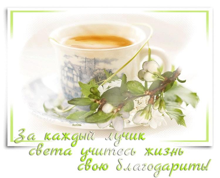 Картинки утро новый день (2)