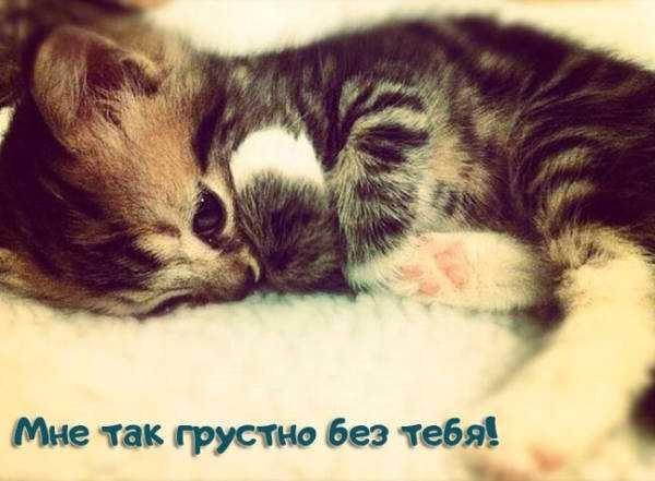 Красивые картинки скучаю без тебя (9)