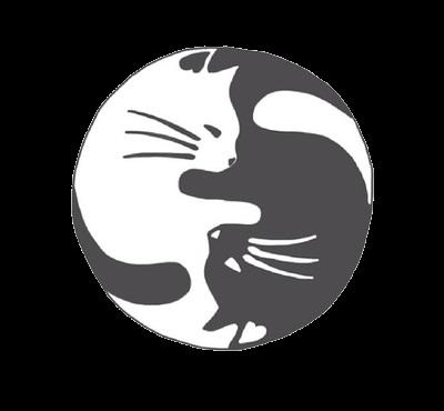 Легкие черно белые картинки для срисовки (3)