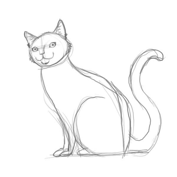 Лучшие картинки для срисовки кошки (21)