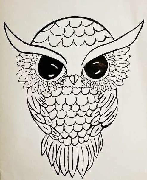 Лучшие картинки для срисовки сова (24)