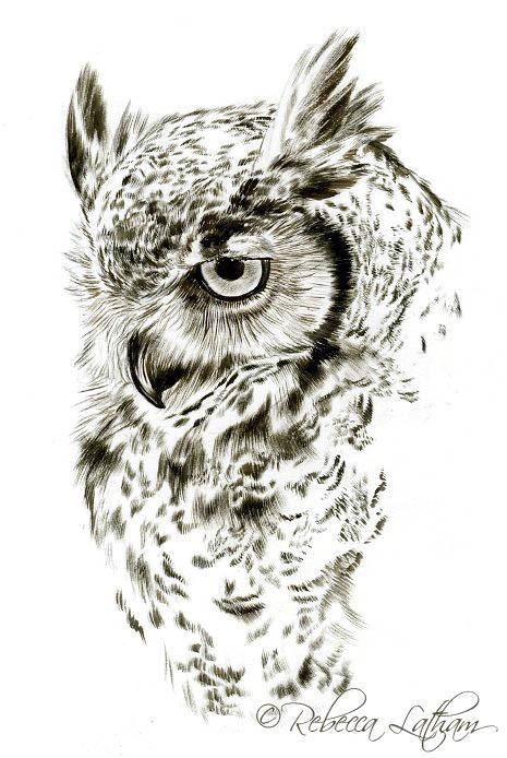 Лучшие картинки для срисовки сова (28)