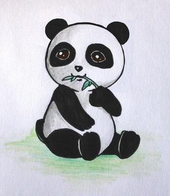 Нарисованные картинки панды (1)