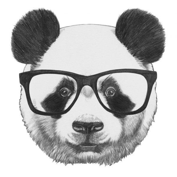 Нарисованные картинки панды (14)