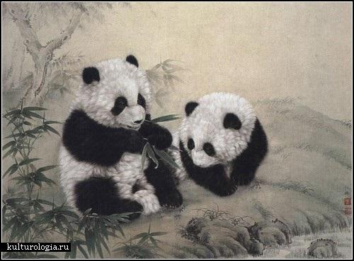 Нарисованные картинки панды (18)