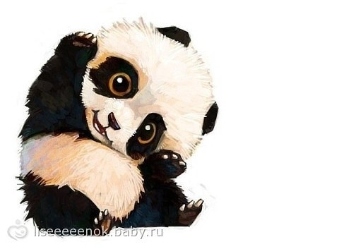 Нарисованные картинки панды (5)