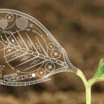 Почему биологию считают наукой будущего?