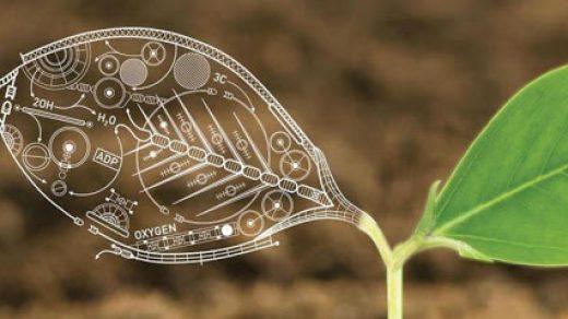 Почему биологию считают наукой будущего