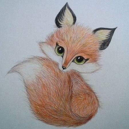 Рисунки карандашом милые животные - подборка (10)