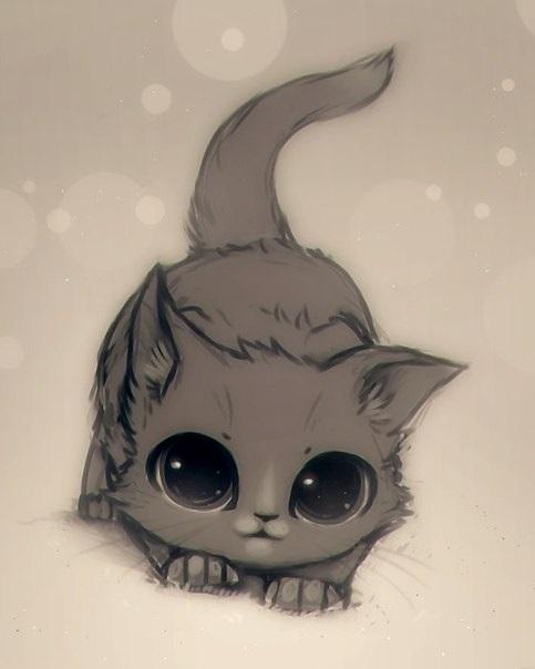 Рисунки карандашом милые животные   подборка (14)