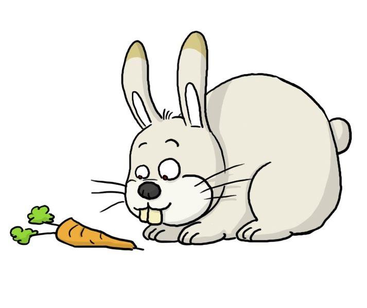 Рисунки кролики для детишек (15)