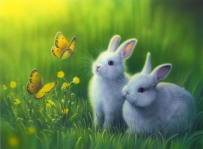 Рисунки кролики для детишек (2)