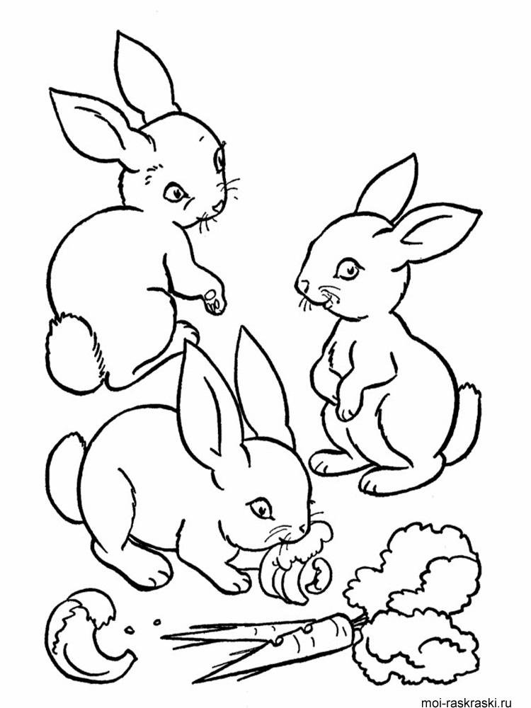 Рисунки кролики для детишек (25)