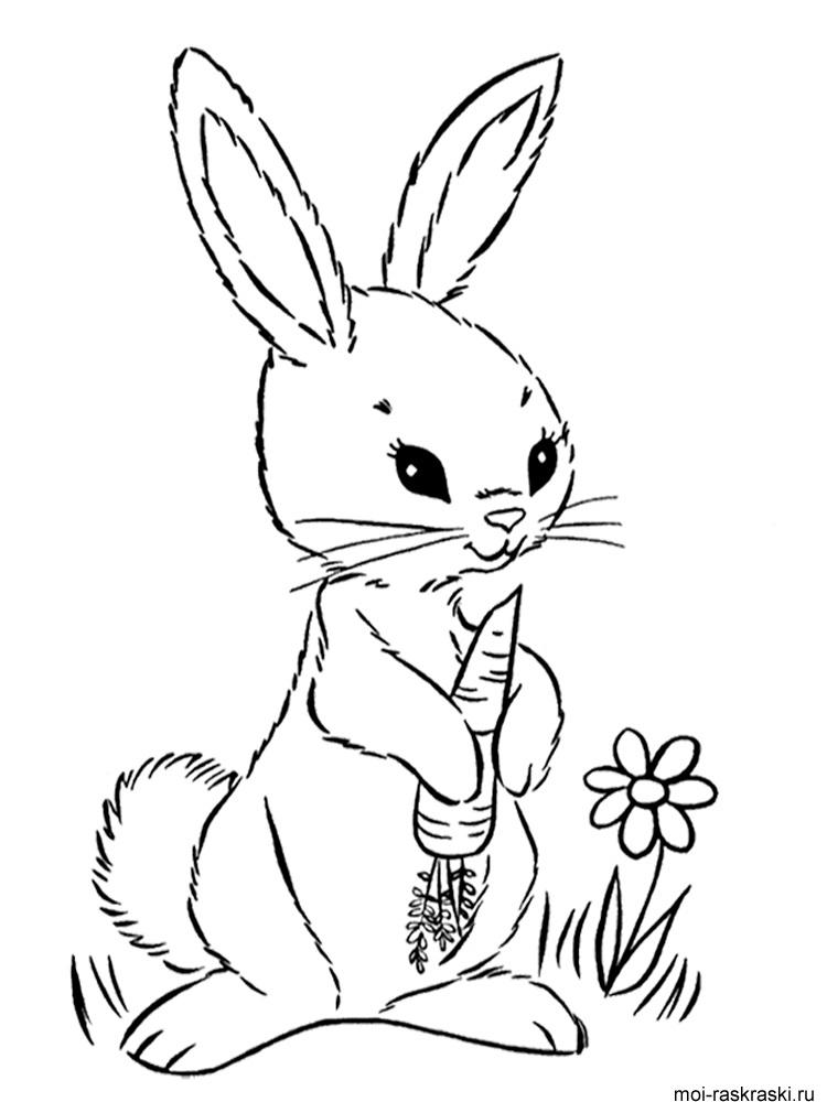 Рисунки кролики для детишек (29)