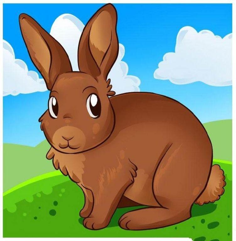Рисунки кролики для детишек (4)