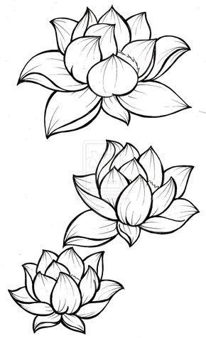 Рисунки цветов для срисовки цветные (12)